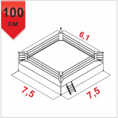 Боксерский ринг Boyko ПРОФЕССИОНАЛЬНЫЙ помост 7,5х7,5х1м. канаты 6,1х6,1м