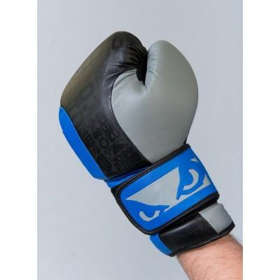 Боксерские перчатки Bad Boy Legasy 2.0