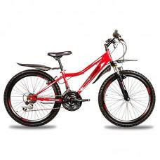 Велосипед детский Premier Pegas 24