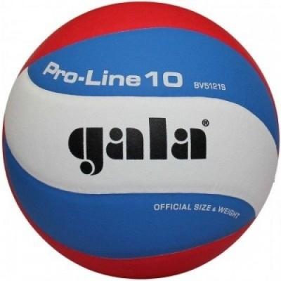 Мяч волейбольный Gala Pro-line BV5121SA
