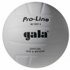 Мяч волейбольный Gala Pro-Line BV 5211SAE
