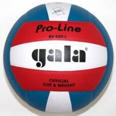 Мяч волейбольный Gala Pro-Line BV 5011SAE