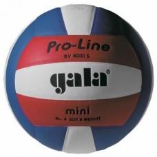 Мяч волейбольный Gala Pro-Line BV 4051SAE