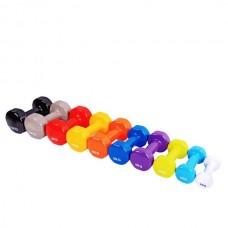 Цветные виниловые гантели Rising 2,5 кг DB2113-2,5
