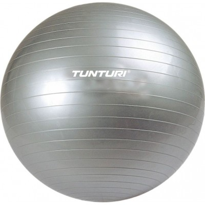 Мяч гимнастический Tunturi Aerobic Gym Ball 11TUSFU025 (65)