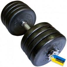 Гантель наборная Newt TI-968-745-42-1 42кг